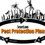 Pest protection in Middle Tennessee