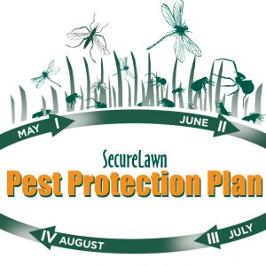 pest protectio services colorado
