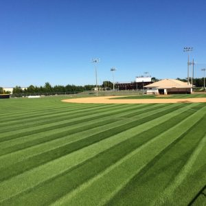 Sports turf management in Middle Tennessee
