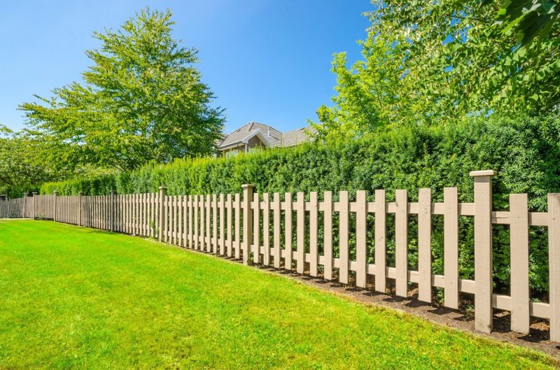 lawn with fence and hedge border securelawn murfreesboro tennessee