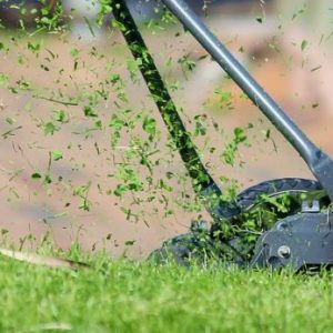 Tips to Prevent Crabgrass