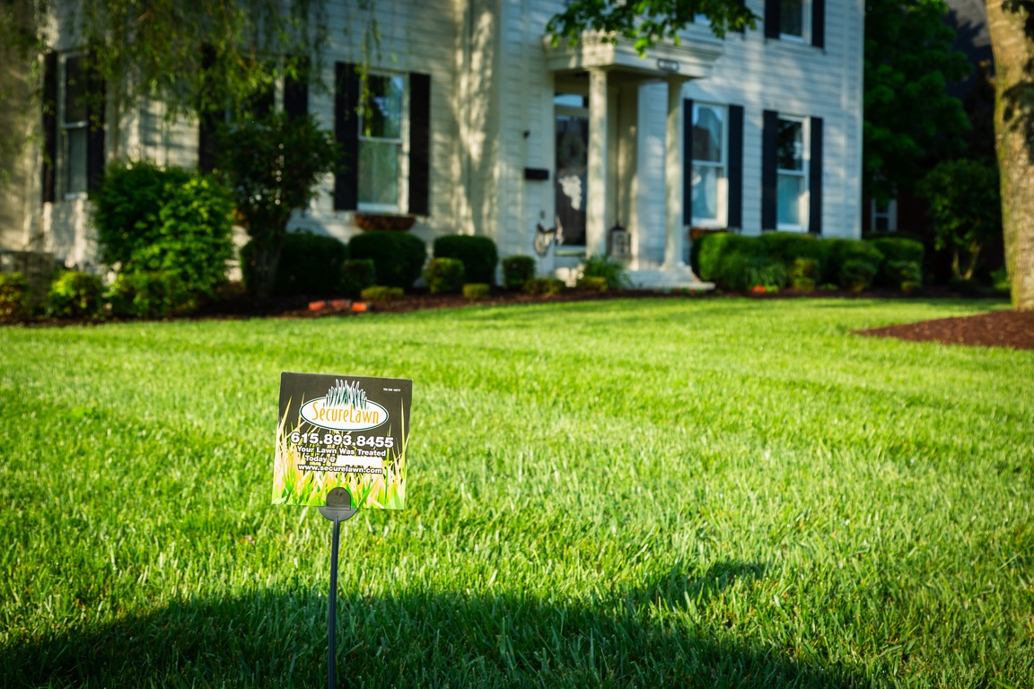 When Is It the Best Time to Fertilize Your Grass