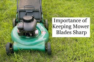 Why Should You Keep the Blades Sharp