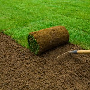 install your new lawn